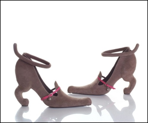 Doggy Shoes